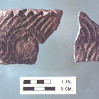 44TZ0001_sherds_complicated_stamped.tif